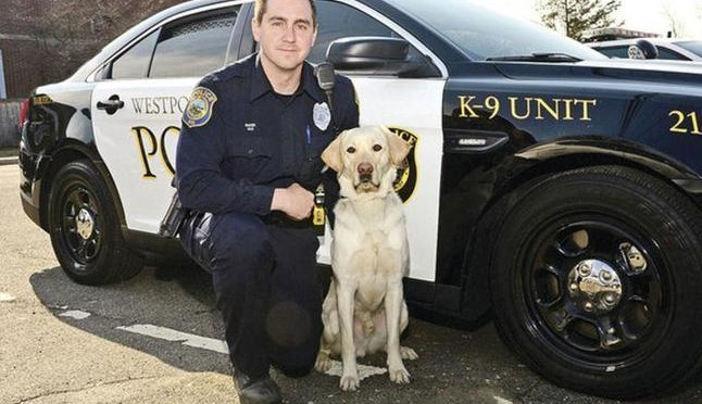 Westport, Connecticut Police Department Adds Service Dog 'Chase'