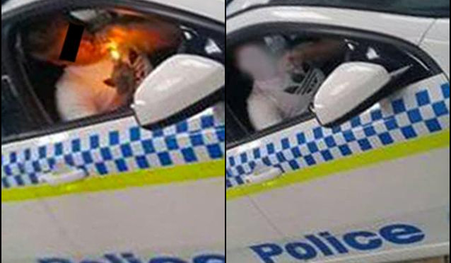 Tasmania Police Car Breach Sparks Probe