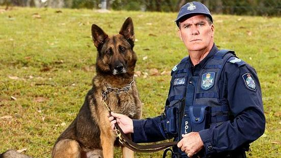 Dogs Prove They Are Still a Cops' Best Tool In Age of Technology