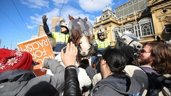 Police Horse Punched In Melbourne Riot With The Operation Costs Expected To Reach $250,000
