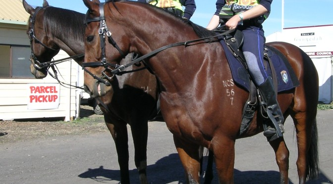 Royals Mark 190th Anniversary of New South Wales Mounted Police