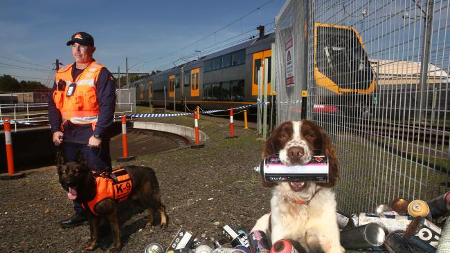 NSW Police Enlist Dogs To Help Track Graffiti Vandals
